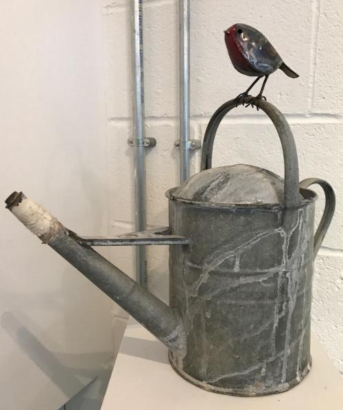 Robin on a Wateringcan