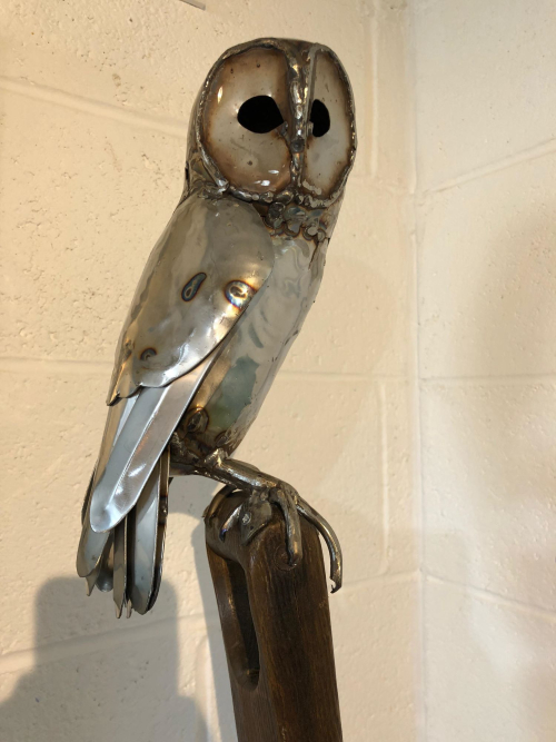 Tawny Owl on a Fork