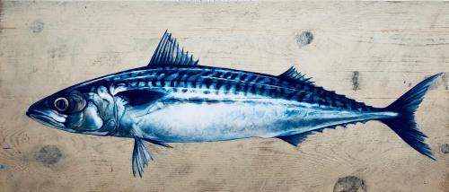 Lone Mackerel