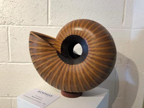 Nautilus Shell No1