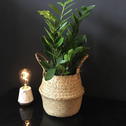 Medium Zami Seagrass Basket