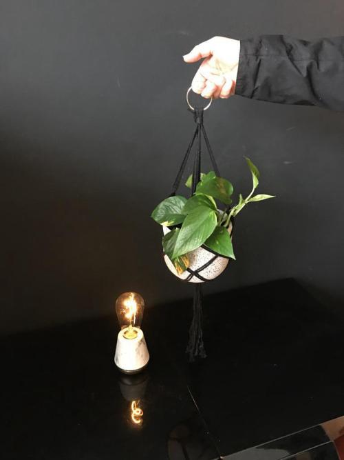 Hang Pothos Grey pot