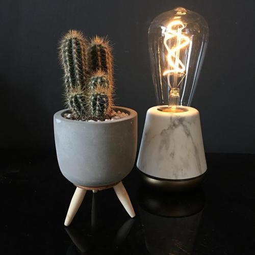 Clumping Cactus