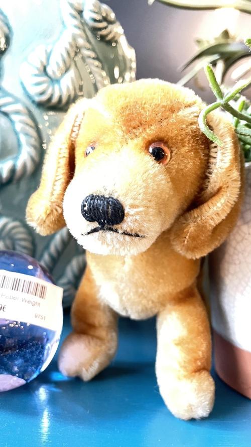 Steiff Dog Toy