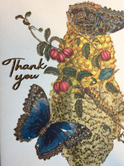A5 Thank You Vanilla Fly : CARD43