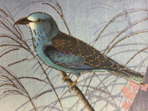 A6 Blue Bird Vanilla Fly : 10K195