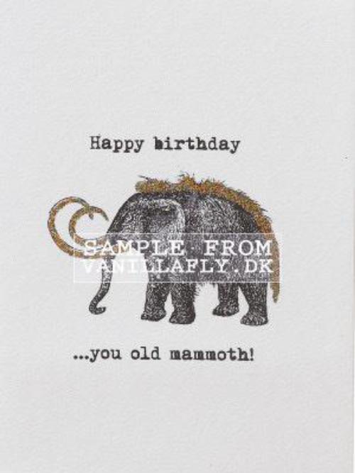 A6 Happy Birthday You Old Mammoth Vanilla Fly : 10K19
