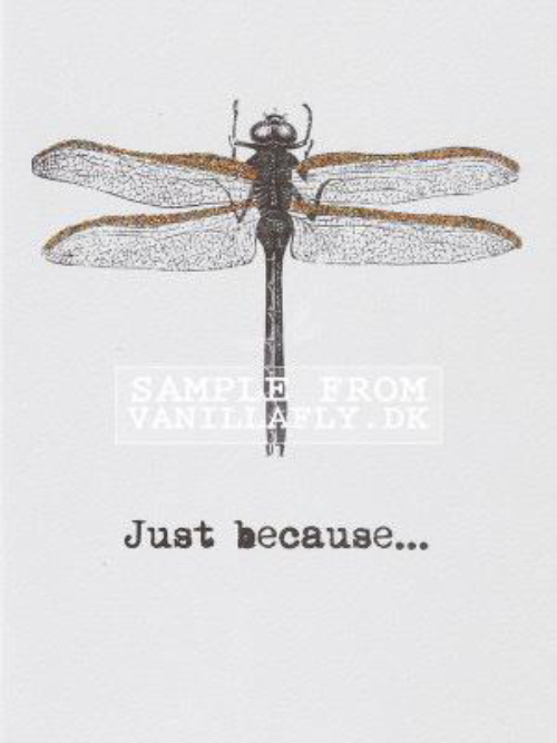 A6 Just Because... Vanilla Fly : 10K27