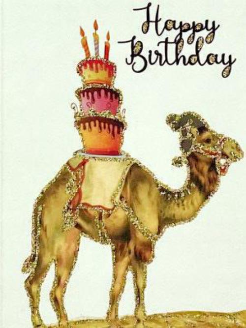 A6 Happy Birthday Camel