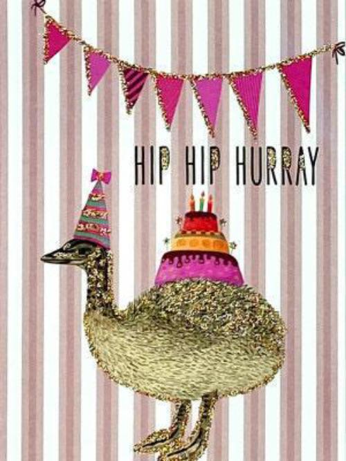 A6 Hip Hip Hurray