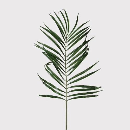 Faux Areca Palm Leaf Spray