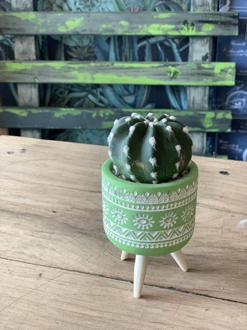 Ball Cactus Green Pot Wooden Legs