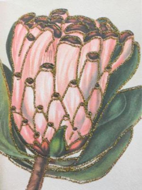 Pink Protea 10K234
