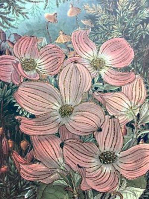 A5 Viburnum Pink CARD26