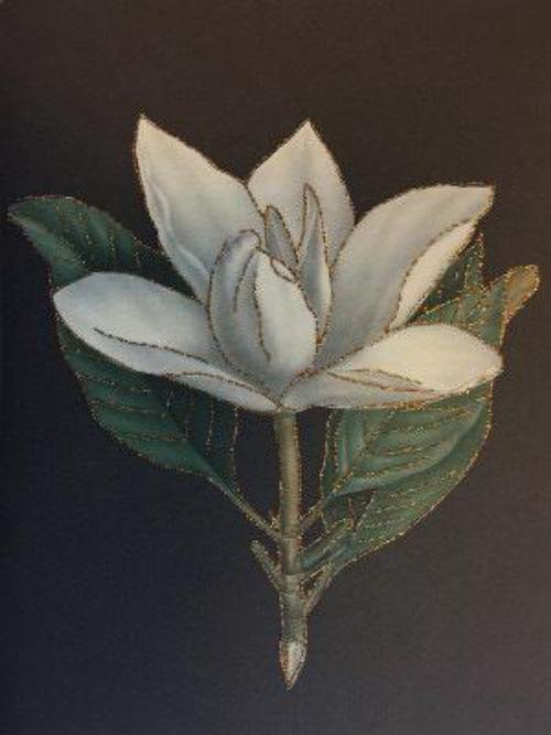 A5 Magnolia Grandflora CARD45