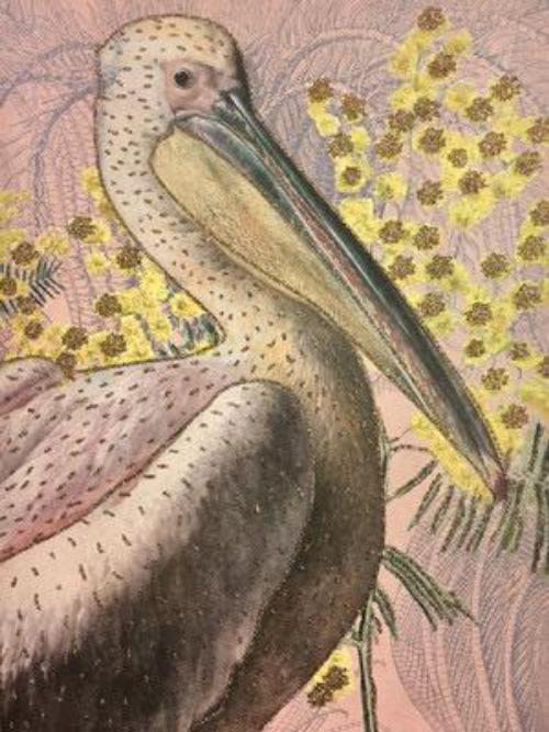 A5 Pelican Card CARD27
