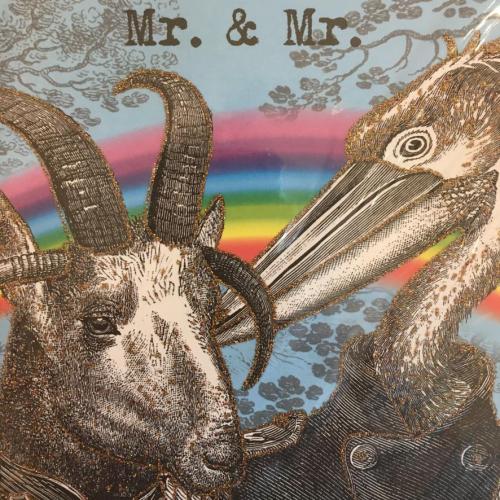 A5 Mr & Mr  CARD17