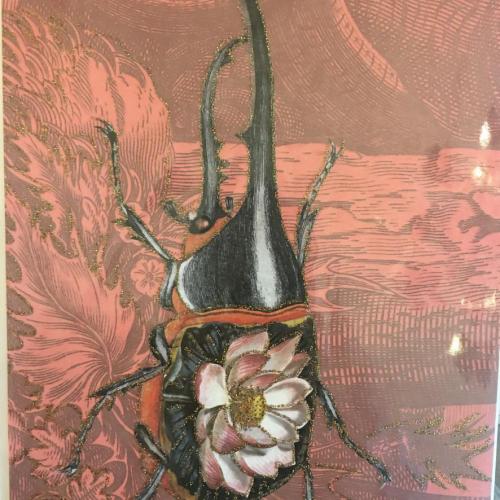 A5 Beetle Card CARD24