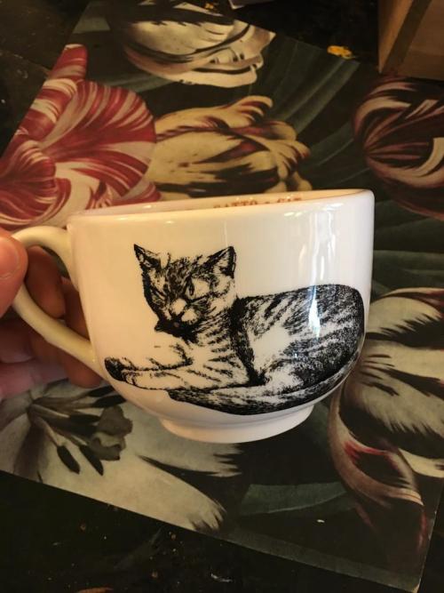 Sir|Madam Mug Cat