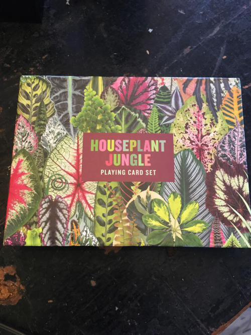 Houseplant Jungle Playing Card Game