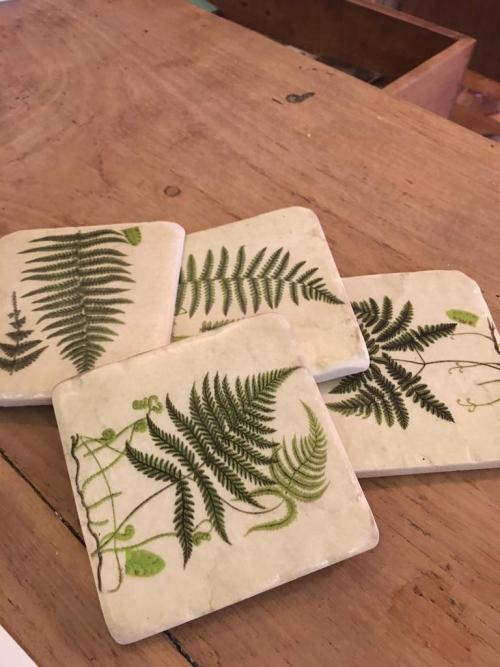 Fern Coasters (4)