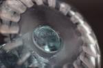 Rene lalique rare alexandrite Alaska ashtray