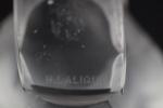 Rene Lalique paperweight Moineau Sournois