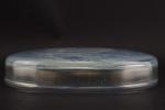 Rene Lalique Deux Sirenes opalescent box