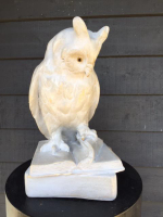 A 19th century French Plaster Cast Figure of an Owl seated on a book